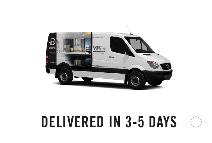 Image of Van | Delivered in 3-4 days